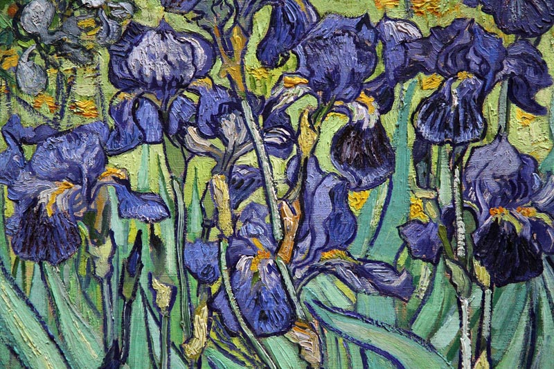 Life imitates Art far more than Art imitates Life         Oscar Wilde    Van Gogh Irises Getty